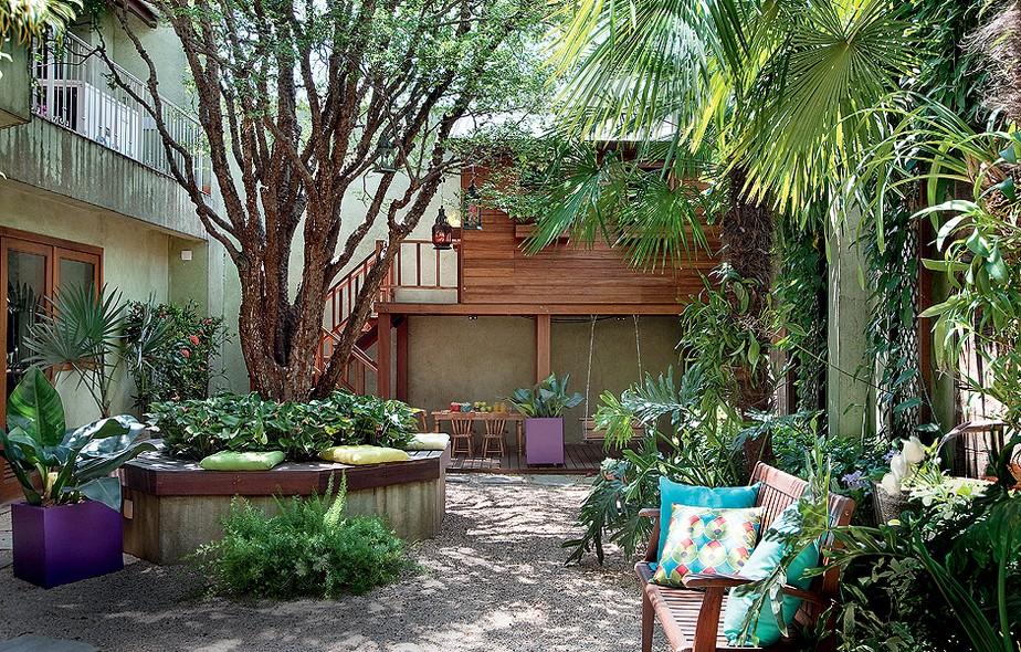 Arbustos e arvores em casa